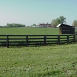 Treated Wood Horse Fencing
